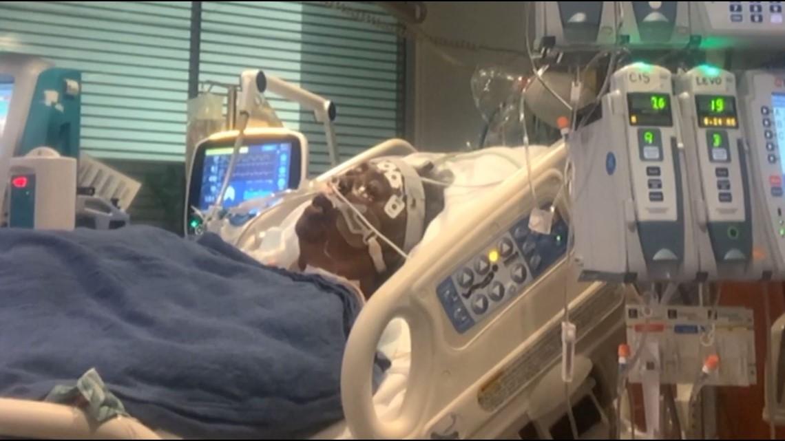 COVID-19 outbreaks: Nursing homes avoid litigation